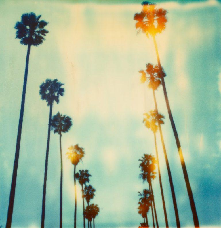 Stefanie Schneider – California Dreaming