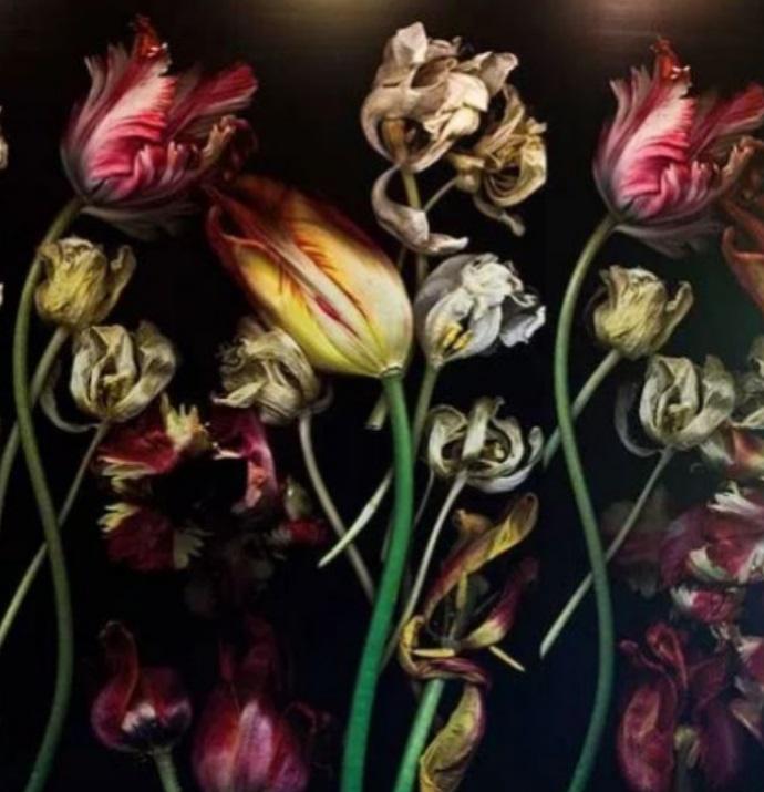 Luzia Simons – Ethereal Utopia of Beauty